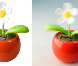 Floare decor Samba personalizata